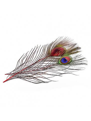 Peacock Eye • 2 pcs