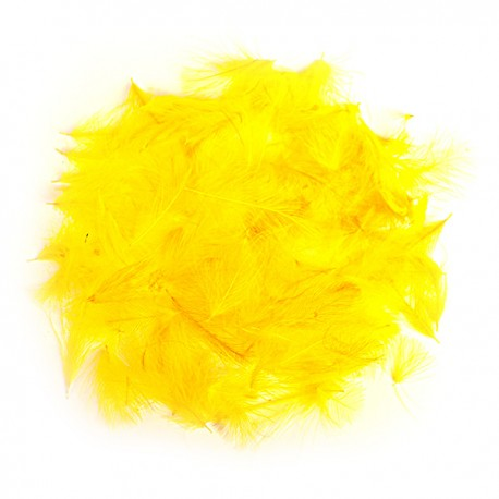 CDC - Yellow
