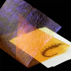 Fine UV Flash Back - Sunburst